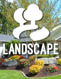 Landscape Image 1