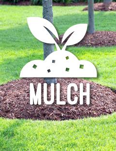 Mulch Image 1